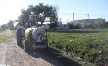 El Municipio intensifica los trabajos de fumigación en la zona de la costa