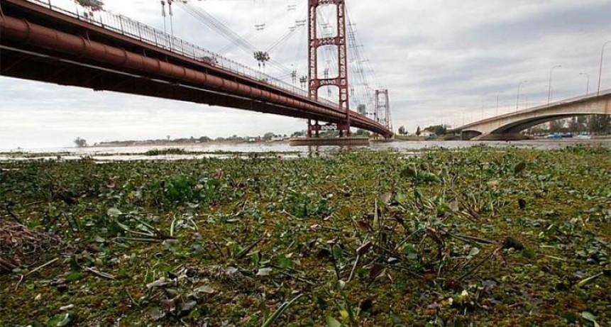 Nivel de alerta en el río Paraná