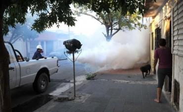 Dengue: aclaración sobre operativos de fumigación