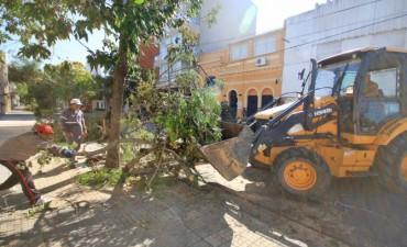 Intenso trabajo de los equipos del Municipio para normalizar la situación en la ciudad