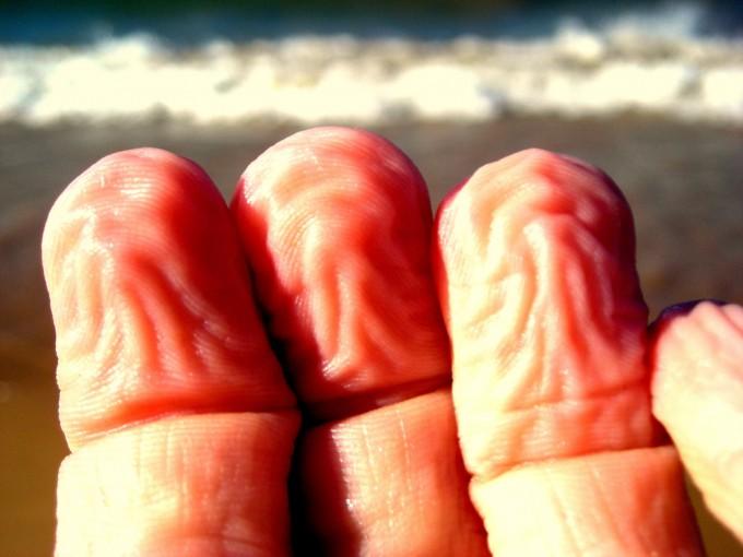 ¿Sabías por qué se arrugan los dedos bajo el agua?