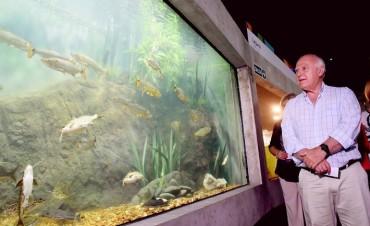 El viernes se inaugurará el acuario de Rosario
