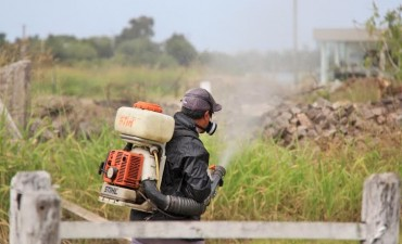 El Municipio continúa con las tareas de fumigación en la ciudad