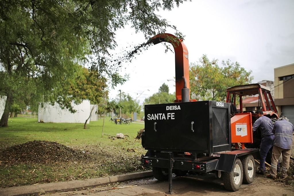El municipio ya trasladó 1.000 toneladas de ramas y árboles caídos por el temporal