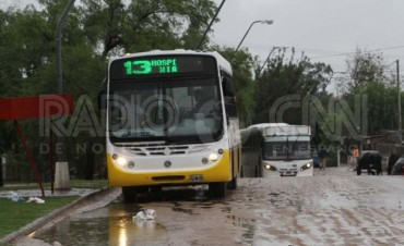 Transporte Publico: Estado del servicio en la ciudad