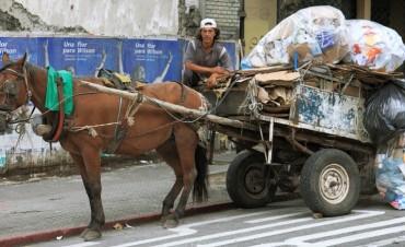 En Rosario prohibieron los carros y en Santa Fe se ensayan soluciones