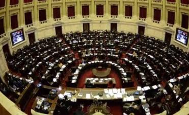 Media sanción de Diputados para la tarifa eléctrica gratuita para electrodependientes