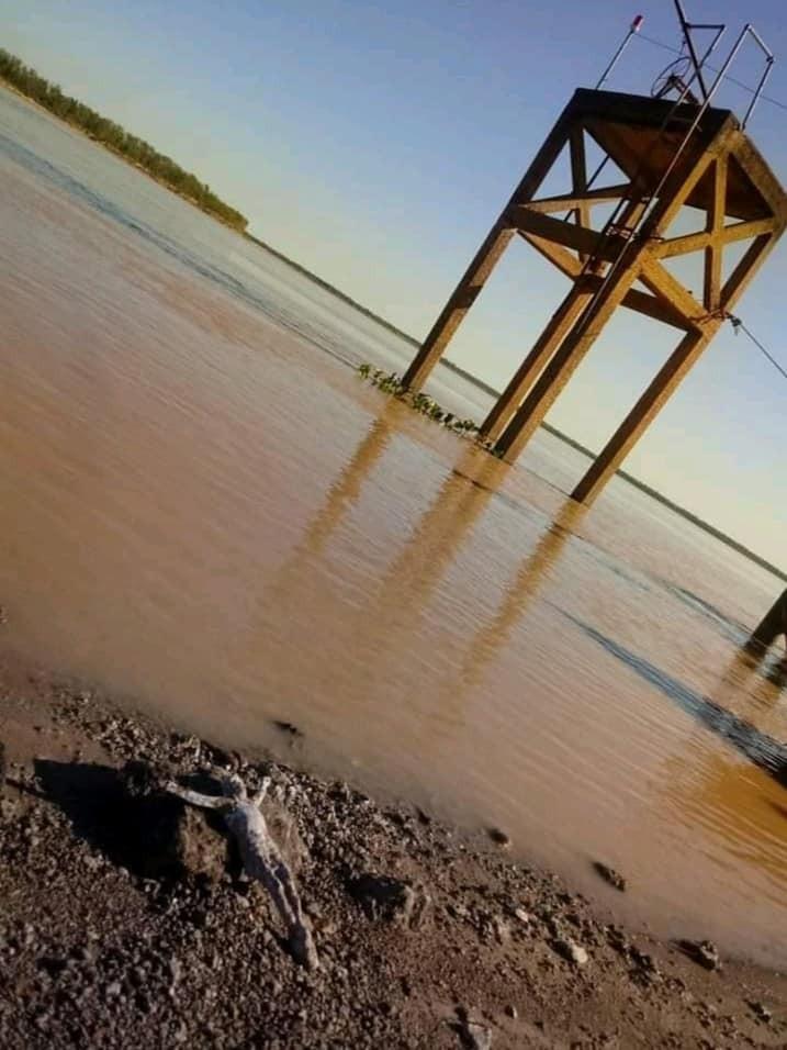 Conmoción por aparición de un Cristo en la costa del río Paraná