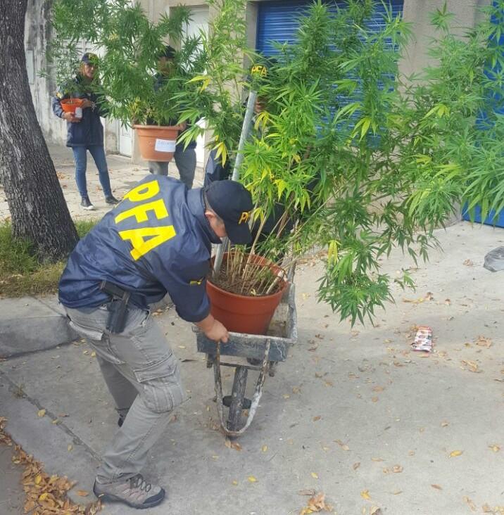 Detuvieron a un vendedor de droga con pesos, dólares, euros, reales y un arma cargada