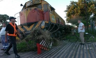 Llegarán fondos de China para sacar el tren de carga de la ciudad