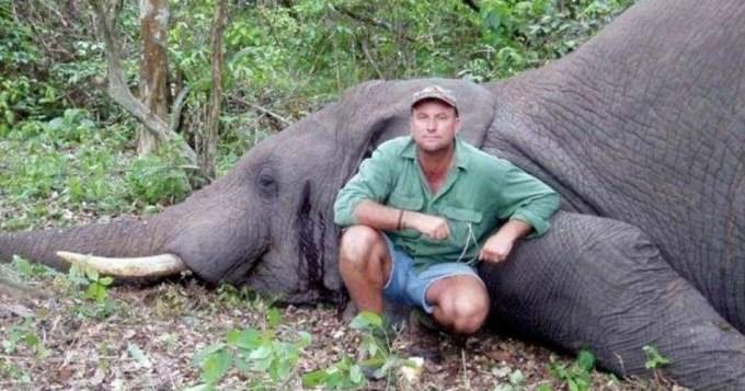 Cazador de elefantes murió aplastado por uno de ellos