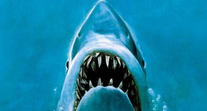 Capturó una imagen idéntica a la película Tiburón