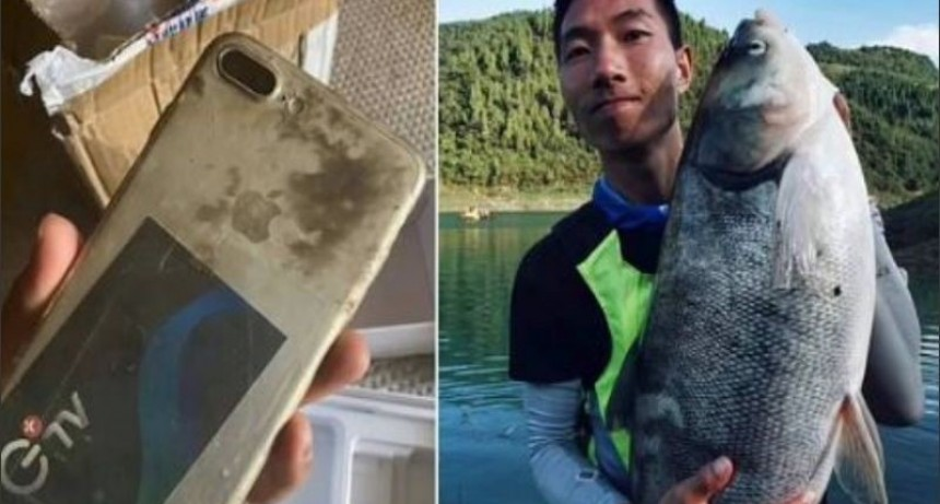 Se le cayó el celular al río, lo recuperó meses después y sigue funcionando