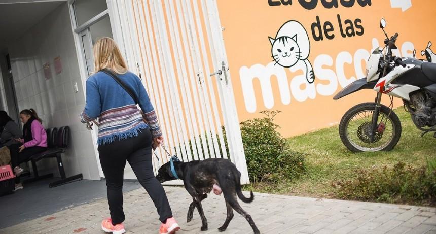 Ya hubo más de 3.200 atenciones a mascotas en el Parque Garay