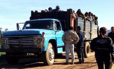 Salta: AFIP halló 94 trabajadores reducidos a servidumbre