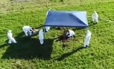 Se encontraron 8 cuerpos durante los rastrillajes por Anahí Benítez