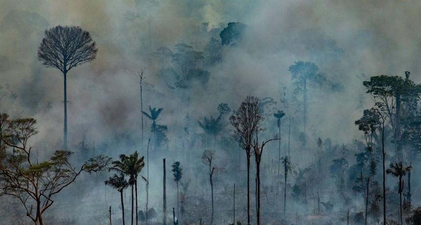 El G7 movilizará 20 millones de dólares para combatir el fuego en la Amazonia