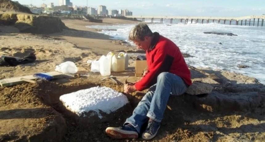 Científicos argentinos hallaron huellas fósiles de un dientes de sable en Miramar