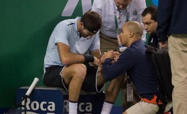 Del Potro es duda para jugar contra Federer