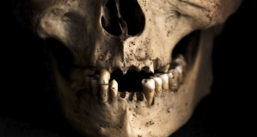 Obreros encontraron mil dientes humanos dentro de una pared